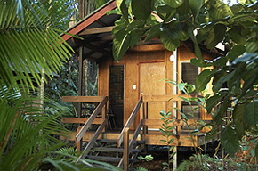 Cape Trib Beach House - Accommodation Melbourne