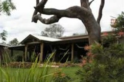 The Hollow Log Country Retreat - Accommodation Melbourne