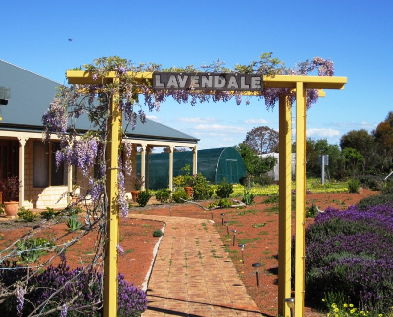 Lavendale Farmstay and Cottages - Accommodation Melbourne