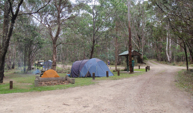 Native Dog campground - Accommodation Melbourne