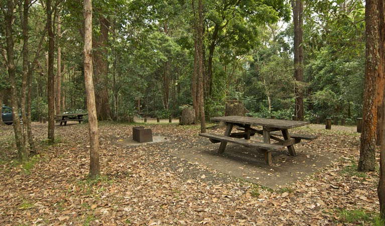 Sheepstation Creek campground - Accommodation Melbourne