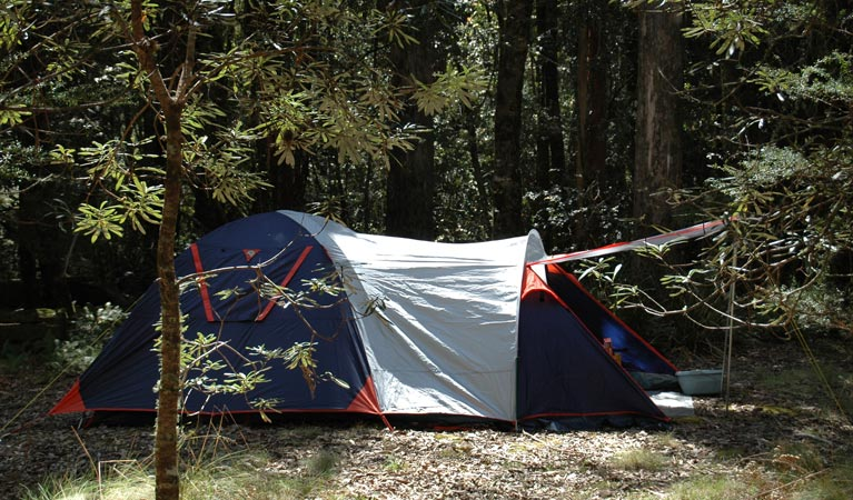 Thungutti campground - Accommodation Melbourne