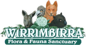 Wirrimbirra Sanctuary - Accommodation Melbourne