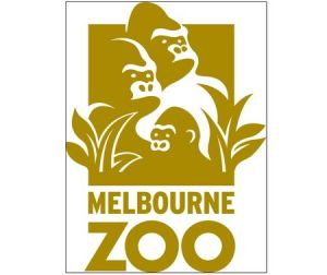 Melbourne Zoo - Accommodation Melbourne
