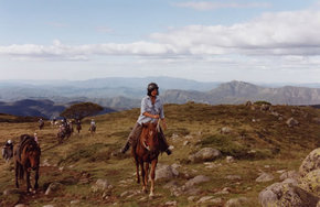 High Country Horses - Accommodation Melbourne