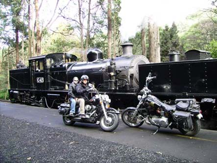Andy's Harley Rides - Accommodation Melbourne