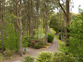 Mount Lofty Botanic Garden - Accommodation Melbourne