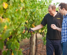 Fratin Brothers Vineyard - Accommodation Melbourne