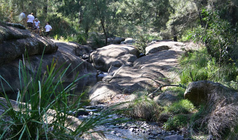 Towarri National Park - Accommodation Melbourne