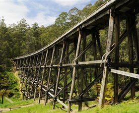 Noojee Trestle Bridge - Accommodation Melbourne