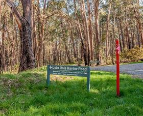 Lobs Hole Ravine 4WD Trail - Accommodation Melbourne