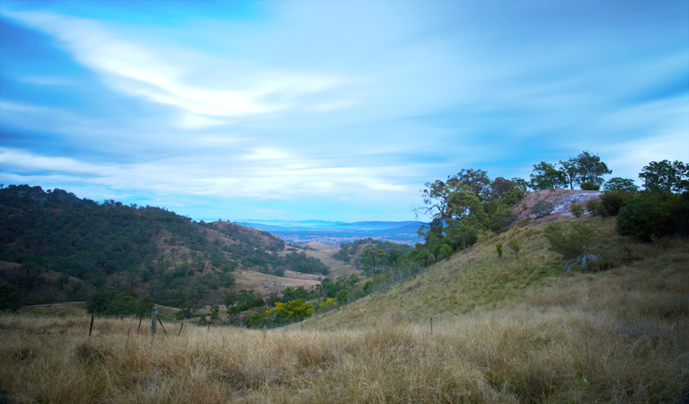 Burning Mountain Nature Reserve - Accommodation Melbourne