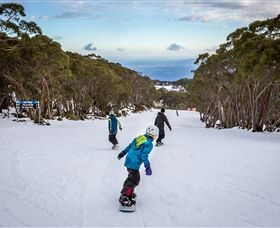 Mt Baw Baw Alpine Resort - Accommodation Melbourne