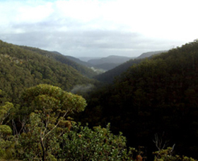 Nattai Gorge Lookout - Accommodation Melbourne