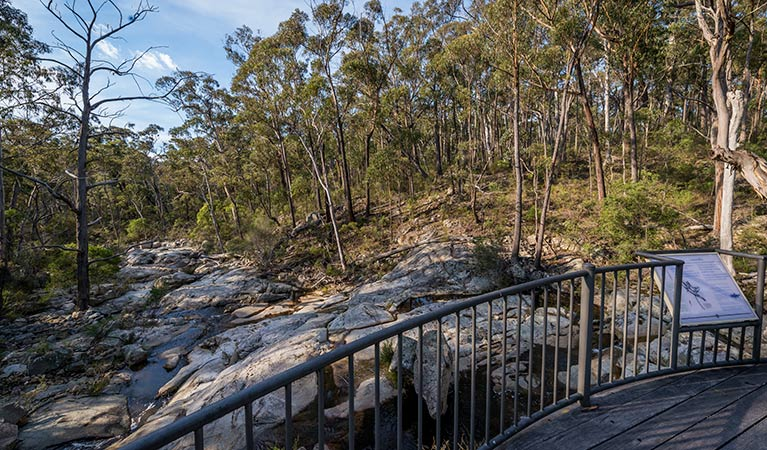Myanba Gorge walking track - Accommodation Melbourne