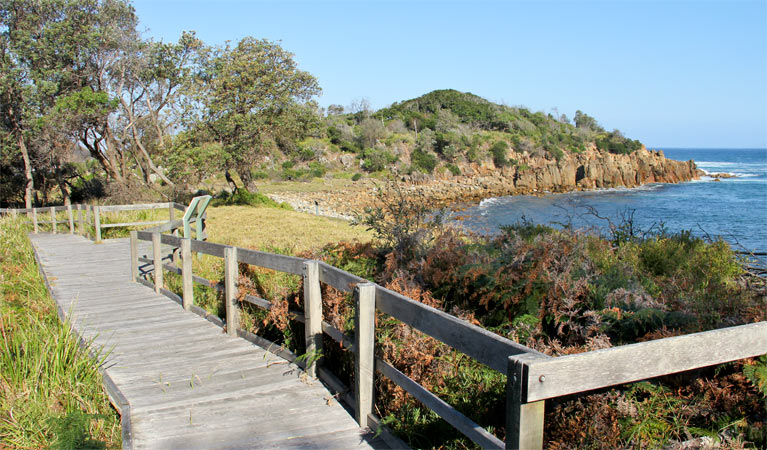 Mimosa Rocks walking track - Accommodation Melbourne