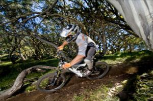 All Terrain Cycles - Accommodation Melbourne