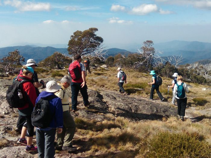 Hedonistic Hiking - Accommodation Melbourne