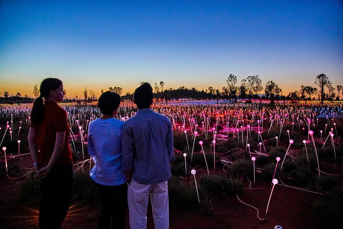 Uluru Field of Light Sunrise Tour - Accommodation Melbourne