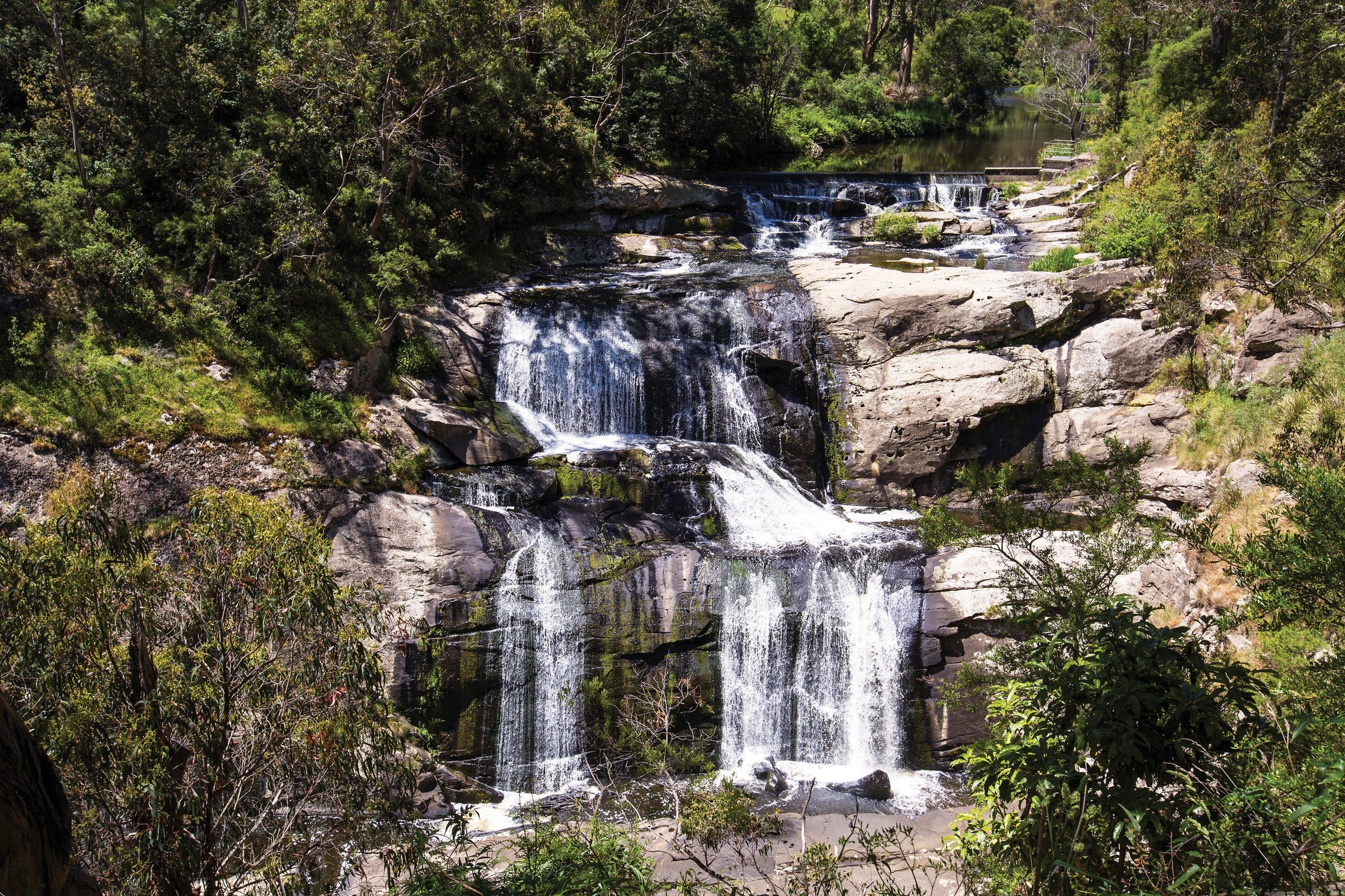 Agnes Falls Scenic Reserve - Accommodation Melbourne