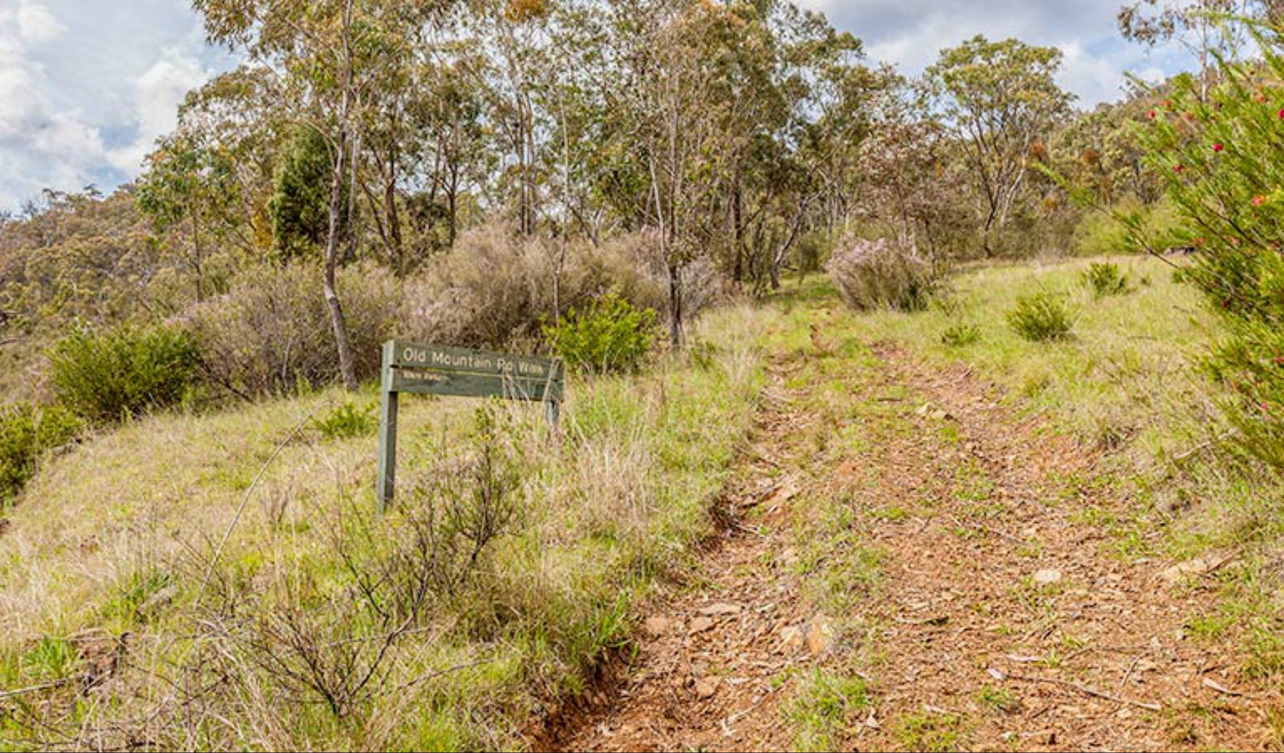Old Mountain Road Walking Track - Accommodation Melbourne