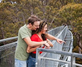 Valley of the Giants Tree Top Walk - Accommodation Melbourne