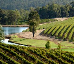 Brookhampton Estate Vineyard - Accommodation Melbourne