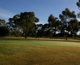 Winchelsea Golf Club - Accommodation Melbourne