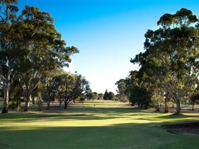 Loxton Golf Club - Accommodation Melbourne