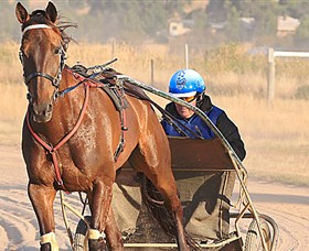 Ballarat  District Trotting Club - Accommodation Melbourne