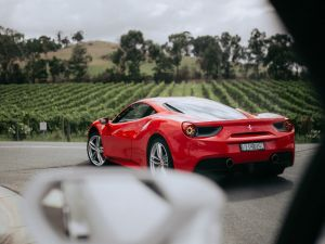 The Prancing Horse Supercar Drive Day Experience - Melbourne Yarra Valley - Accommodation Melbourne