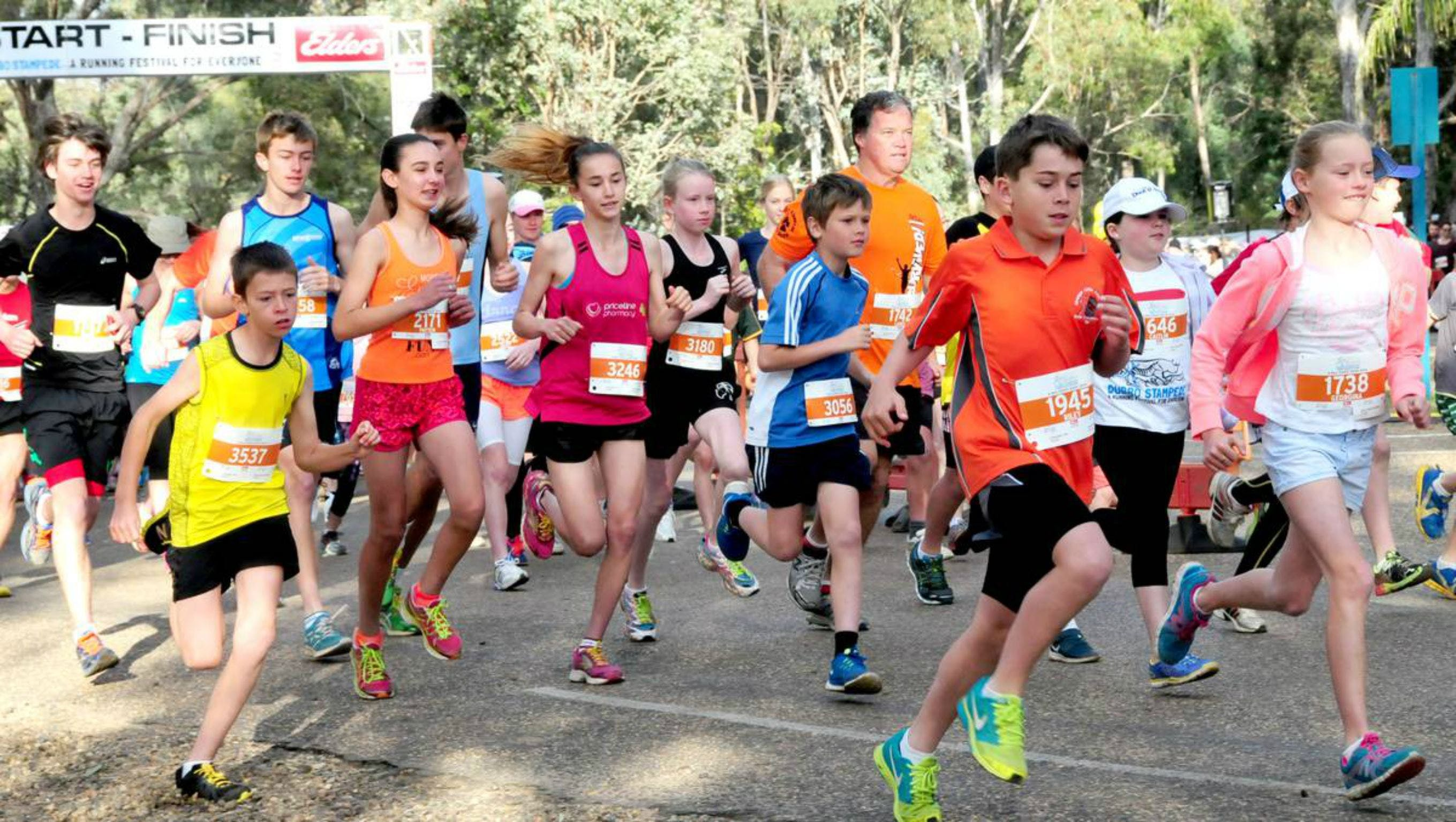 MAAS Group Dubbo Stampede Running Festival - Accommodation Melbourne