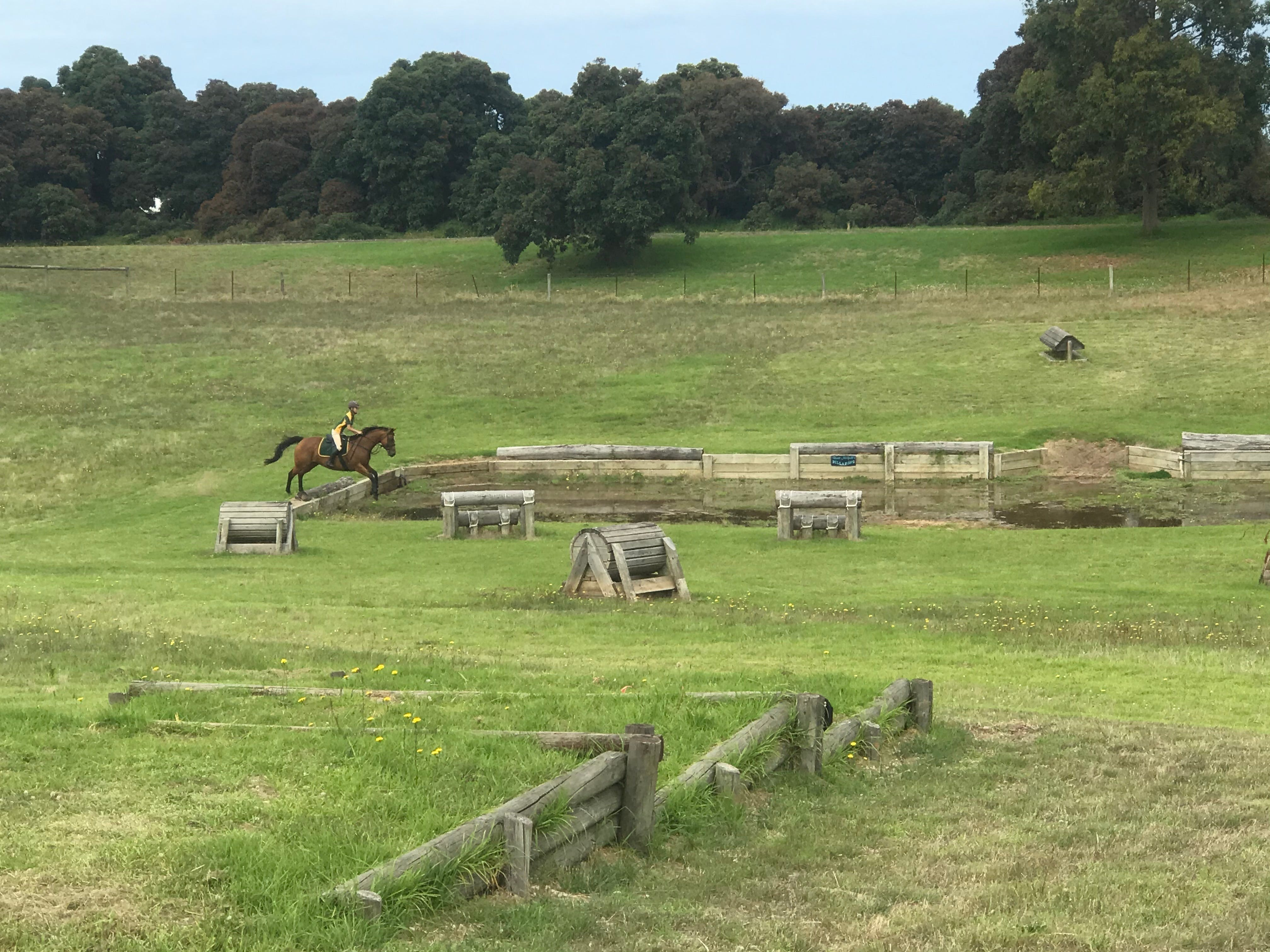 Mount Gambier and District Pony Club Horse Trials 2020 - Accommodation Melbourne
