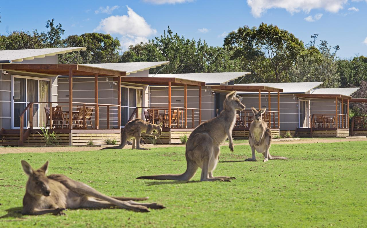 Discovery Parks  Pambula Beach - Accommodation Melbourne