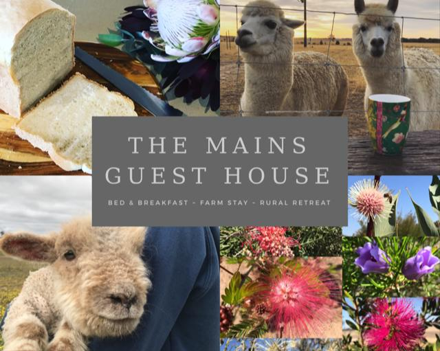 The Mains Guest House - Accommodation Melbourne