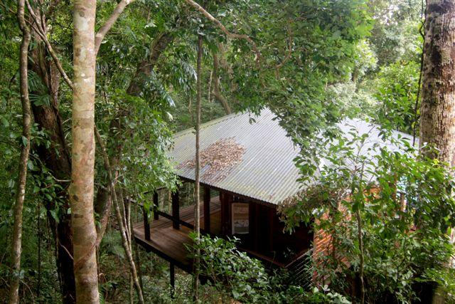 Cairns Reef  Rainforest BB - Accommodation Melbourne